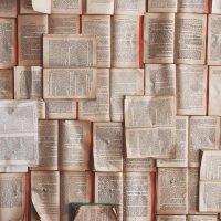 Zettelkasten: Notas para la reflexión